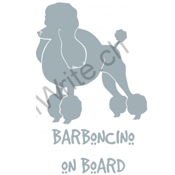 Barboncino on Board